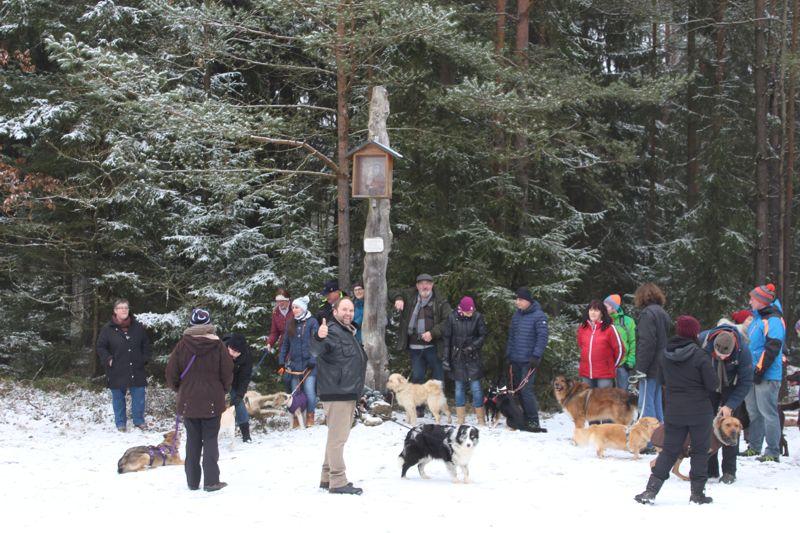 01. Januar 2016: Neujahrswanderung ins Waldnaabtal - IMG_1565.JPG