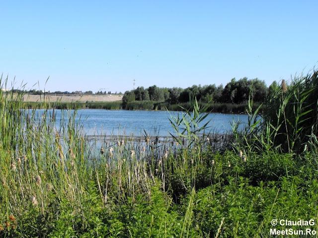 Lacul-Delta Vacaresti. Natura urbana