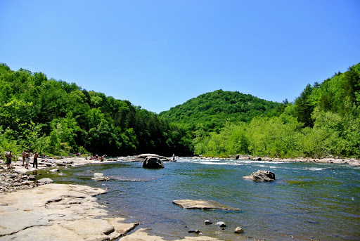 Intrigued by the Harmony of Nature and Lives at Ohiopyle State Park