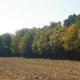 Les Hautes-Lisières (Rouvres, 28), 29 septembre 2011. Photo : J.-M. Gayman