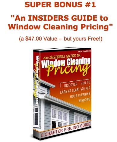 how to quickly and professionaly clean windows