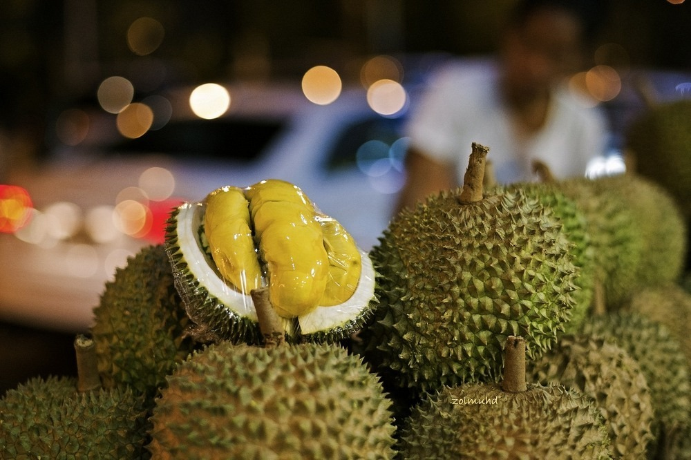 durian-fruit2?imgmax=1600 The Disgusting Food Museum Random