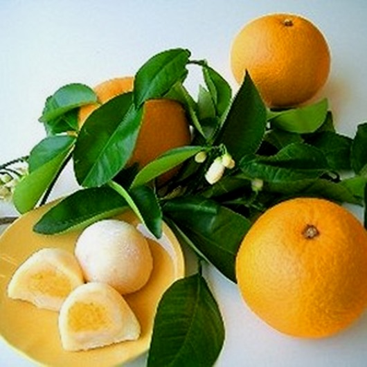 Citrus_Hassaku_Notes