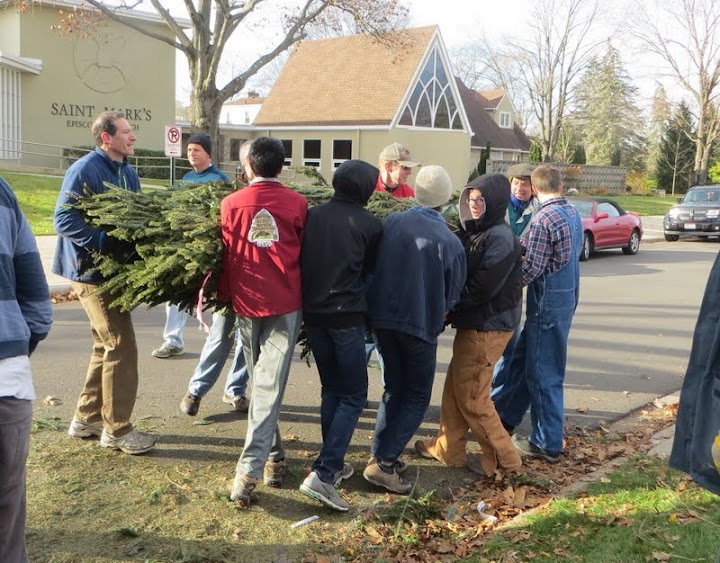 Christmas Tree Lot - IMG_1818.JPG
