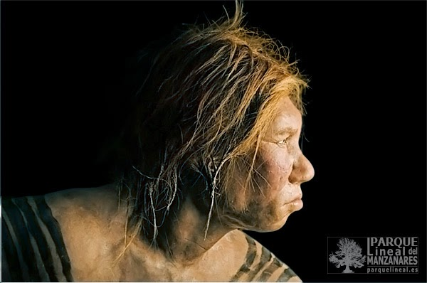 Mujer neandertal. National Geographic.