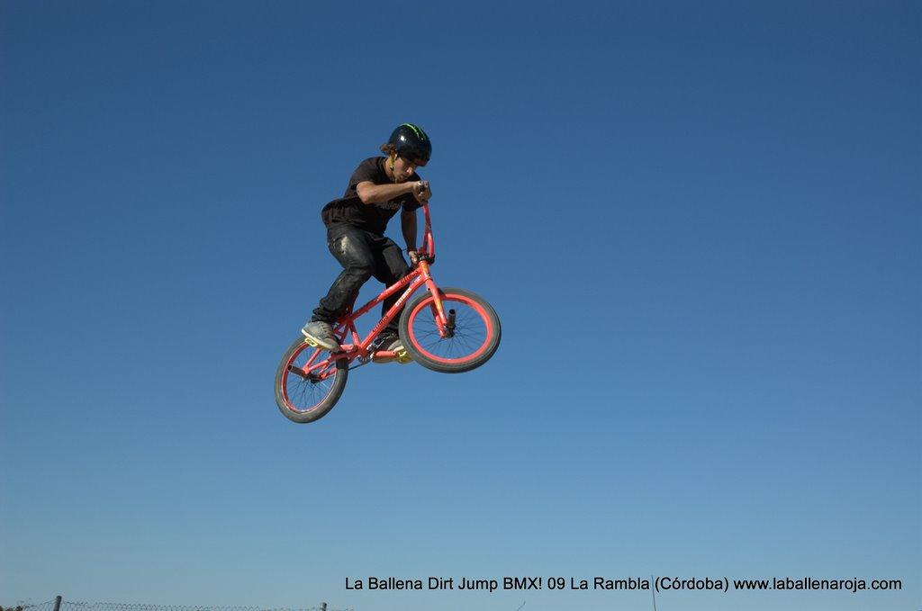 Ballena Dirt Jump BMX 2009 - BMX_09_0054.jpg