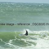 _DSC8020.thumb.jpg