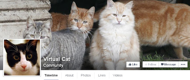 Derek Muller's Virtual Cat Facebook Test