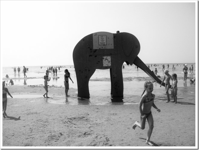 elephant and children on parnu beach photo by sue wellington