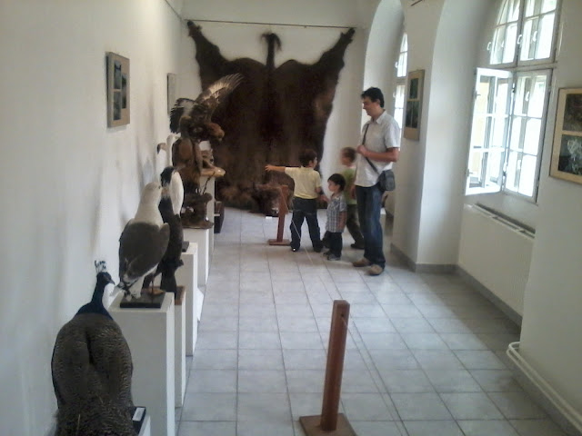 Múzeum - 2012-09-01%2525252016.48.57.jpg