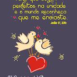 VII Seminário de Vida no Espírito Santo para Jovens Casais - Julho/2014