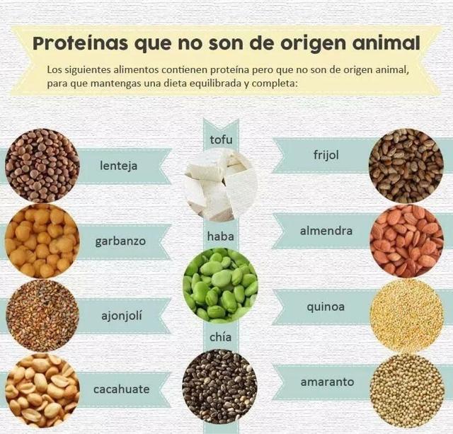 Nutriologo gerardo ramos prote nas que no son de origen animal - Q alimentos son proteinas ...