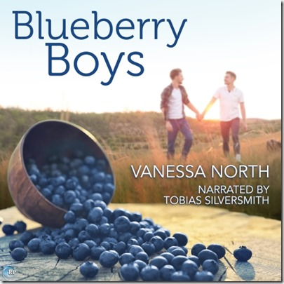 BlueberryBoys_Audiobook