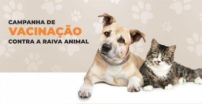 Começa Campanha de Vacinação contra a Raiva Animal em Monteiro