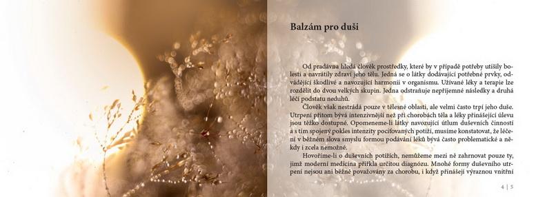 balzam_001-4-kopie