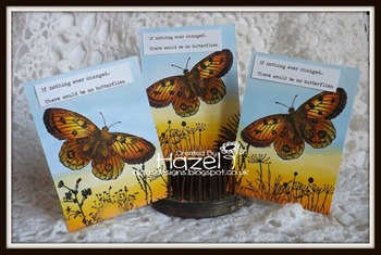 Hazel - beautiful butterflies