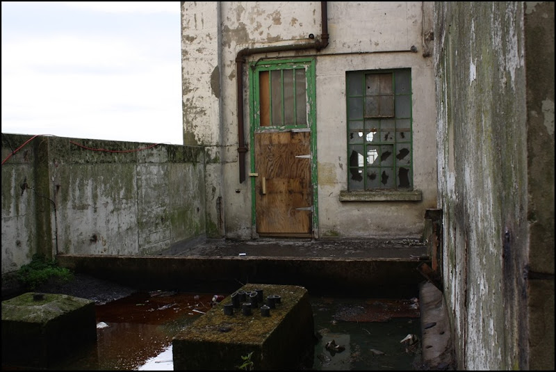 The Green Door - Millennium Mills