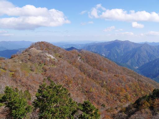 檜塚の斜面がよい色づき