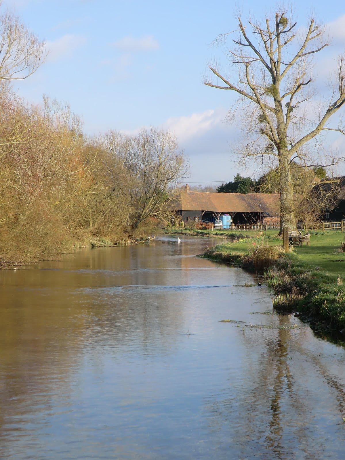 CIMG1717 River Test at Tufton