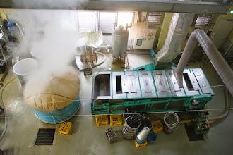Photo: 原料米を蒸す様子
