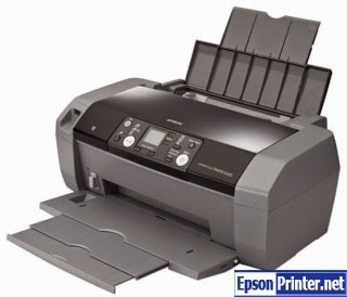 Reset Epson R240 printing device by application