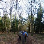 015-Nieuwjaarswandeling met de Bevers.Menno gidst ons door het mooie natuurgebied De Regte Heide te Go+»rle