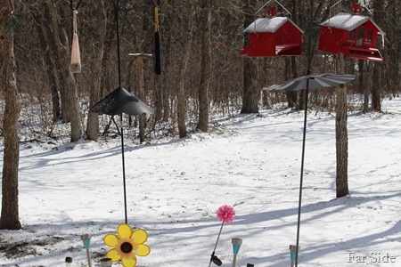 Snow April 2