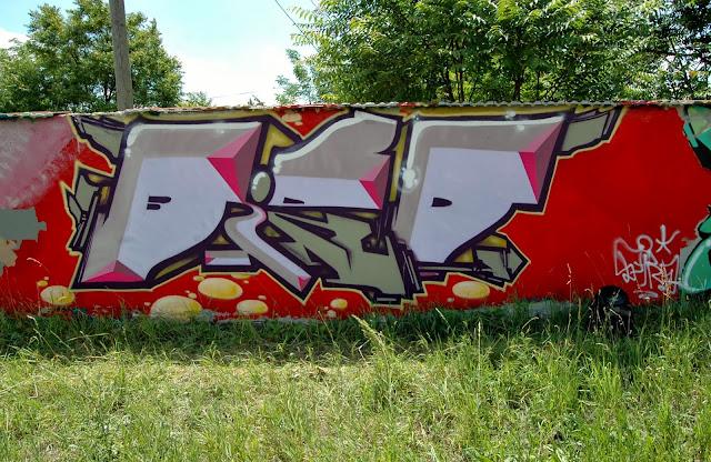 DSC_1223