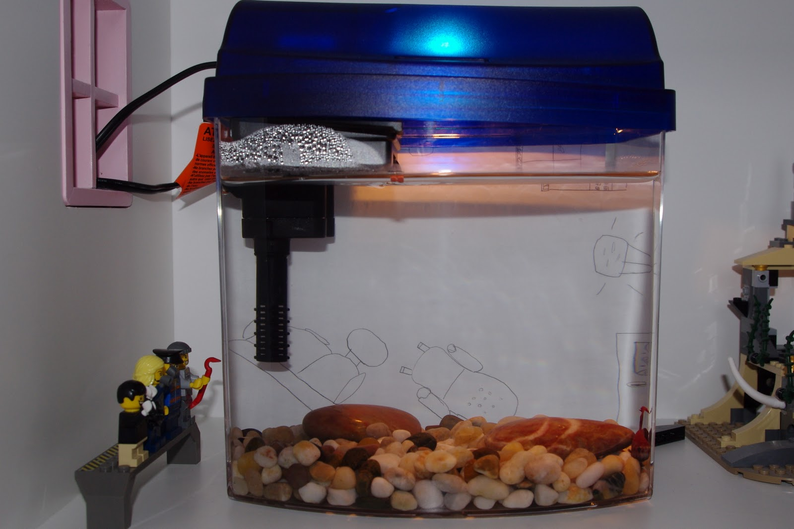 Cool fish tanks cheap funtrublog awesome aquariums 5 for Fish tanks cheap