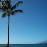 Hawaii Day 6 - 114_1796.JPG