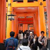 2014 Japan - Dag 8 - jordi-DSC_0690.JPG