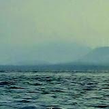 Mitlenatch Island day paddle