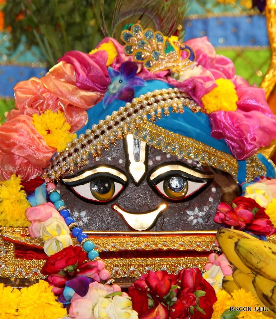 ISKCON Juhu Sringar Deity Darshan on 29th April 2016 (12)