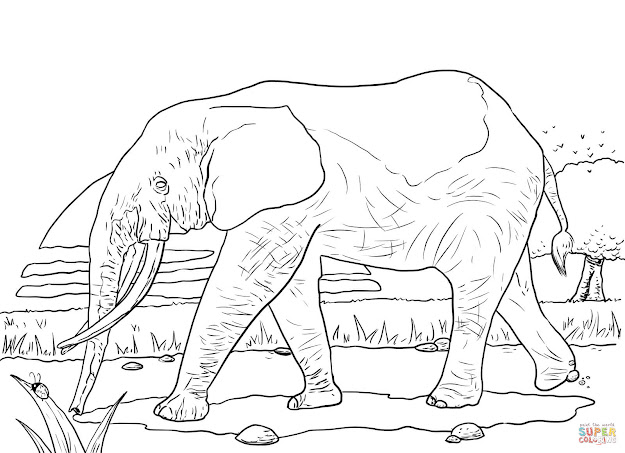 African Savanna Animals Coloring Pages
