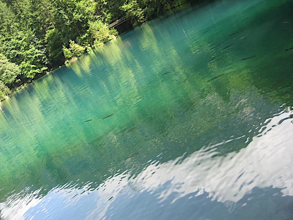Campaments a Suïssa (Kandersteg) 2009 - IMG_3498.JPG