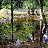 Environs de Colider (Mato Grosso, Brésil), 28 avril 2012. Photo : Cidinha Rissi