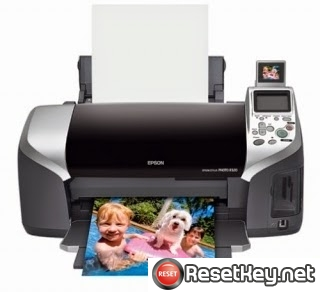 Reset Epson R320 Waste Ink Counter overflow error