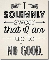 I solemny swear