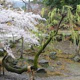 2014 Japan - Dag 8 - jordi-DSC_0452.JPG
