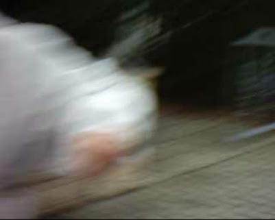 Dorfladen Freckenfeld, CDU Freckenfeld, SPD Freckenfeld, Museumsverein Freckenfeld, Dampfnudeltor Freckenfeld, Hauptstraße Freckenfeld, Kirchstraße Freckenfeld, Raiffeisenbank Freckenfeld, TC Freckenfeld, Modellflugplatz Freckenfeld, Sportplatz Freckenfeld, Gräfenberghalle Freckenfeld, Musikverein Freckenfeld, Gesangverein Freckenfeld