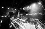 FESTIVALS 2018_AT-AFrikaTageWien_07-bands_Alborosie_hiIMG_0415.jpg