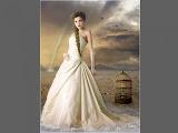 Bride Of White Desert