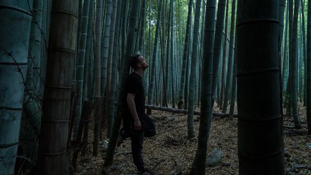 Fakta Bambu Yang Mungkin Belum Kamu Ketahui 34 Fakta Bambu Yang Mungkin Belum Kamu Ketahui