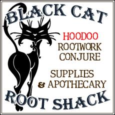 Black Cat Logo Ict Work 58