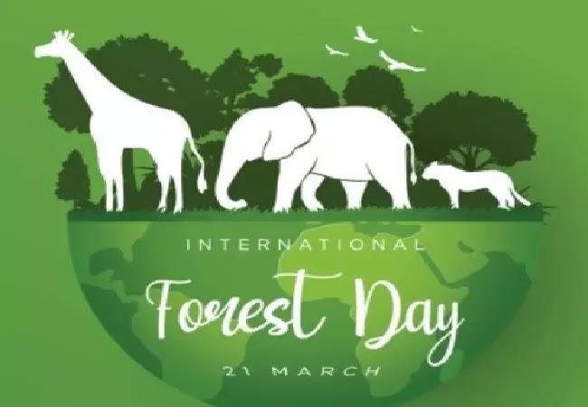 अंतर्राष्ट्रीय वन दिवस 2021: इतिहास, महत्व, विषय और उत्सव