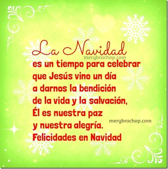 navidad (154)