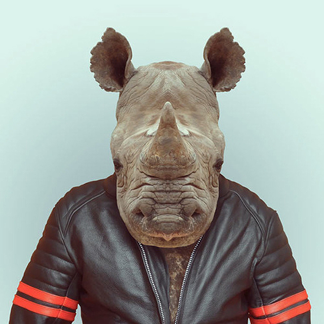 *Zoo Portraits動物時尚秀:正經八百時裝篇! 27