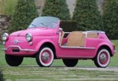 104 Fiat 500 Jolly