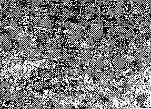 Одна из версий происхождения Тoргайских геоглифов 3