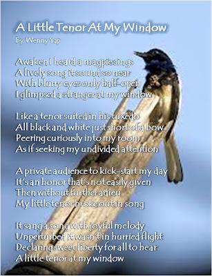 My Poem: A Little Tenor At My Window ~ Wenny Yap Com